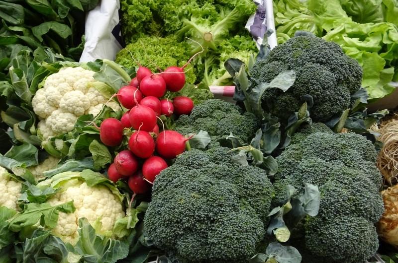 dieta-roślinna-dietetyk