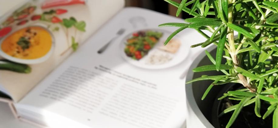 talerz-zdrowego-odżywiania